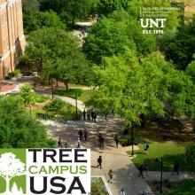Trees on UNT Campus with Tree Campus USA logo