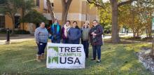 Tree Tour Fall 2019